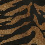 Piel Luxury White Nuance Beige Siberian Tiger Black