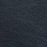 Piel Ascot Color Petroleo