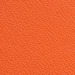 Piel Babel Color Begonia