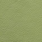 Piel Babel Color Green