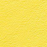 Piel Babel Color Sour
