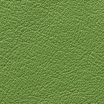 Piel Babel Color Verde