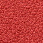 Piel Ciervo Color Rojo