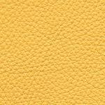 Piel Dálmata Color 17