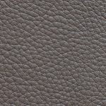 tauro-grigio-OKweb
