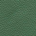 Piel Vinci Color Verde